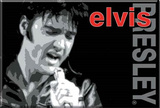 Elvis Presley Singing Locker Magnet Magnet