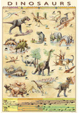 Laminated Dinosaurs Educational Poster Fotografia