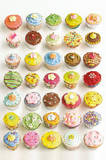Howard Shooter Cupcakes Photo Art Poster Print Prints