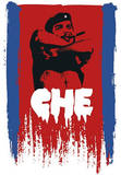Che Guevara (Arms Crossed) Art Poster Print Prints