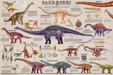 Sauropods Educational Dinosaur Science Chart Poster Pôsters