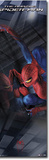 The Amazing Spider-Man Comic Door Poster Print Posters