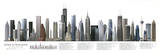 The American Skyscraper Illustrated Panorama Art Print Poster - White background Photo
