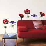 La Cocotte Anemones Wall Stickers Decalque em parede
