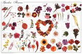 Laminated Garden Flowers Educational Science Chart Poster Print