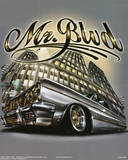 Mr. Blvd (Lowrider on Street) Art Poster Print Photo