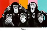 The Chimp Compilation Pop Art Print Poster - Poster