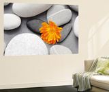 Achim Sass A Heart among Stones Mini Mural Huge Poster Art Print Wall Mural