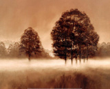 Alan Parker Misty Meadow Art Print Poster Posters