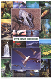 Laminated It's Our Choice Enviornment Educational Science Chart Poster Affiches