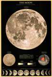 Laminated The Moon Educational Poster Posters