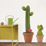 Atelier Giant Cactus Wall Stickers Wall Decal