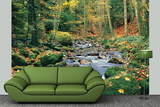 Forest Stream Huge Wall Mural Art Print Poster Wallpaper Mural