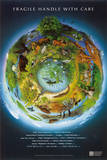Fragile Earth Conservation Educational Chart Poster Posters