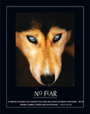 No Fear Hellen Keller Quote Dog Art Print Poster Prints