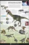 Dinosaurs Dorling Kindersley Educational Poster Print Posters