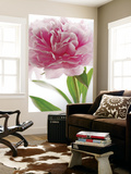 Pink Peony Flower Mini Mural Huge Poster Art Print Wall Mural