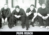 Papa Roach (Group, B&W) Music Poster Print Posters