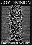 Joy Division punk Poster Unknown Pleasures Ian Curtis Print