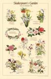 Shakespeare's Garden Flowers From Plays Chart Poster Art
