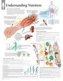 Laminated Understanding Diet and Nutrition Educational Chart Poster Posters
