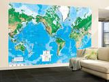 Verdenskort, på engelsk Vægplakat i tapetform