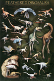 Feathered Prehistoric Dinosaurs Chart Poster Prints