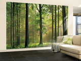 Autumn Forest Huge Wall Mural Art Print Poster Bildtapet (tapet)