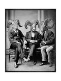 Brotherhood of the Ram Premium giclée print van Grand Ole Bestiary
