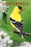Songbirds of North America - 2013 16-Month Weekly Engagement Planner Calendars