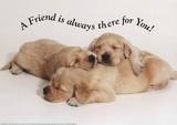 A Friend is Always There For You Puppies Motivational Poster Print Print