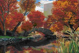 Central Park New York City Seasons 3-D Lenticular Poster Print Prints
