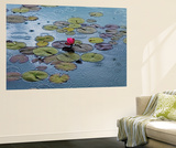 Hank Gans Waterlilies Mini Mural Huge Poster Art Print Wall Mural