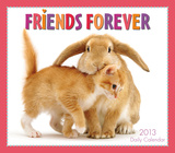 Friends Forever   - 2013 Box/Daily Calendar Calendars