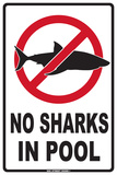 No Sharks in Pool Tin Sign