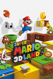 Nintendo-Super Mario Land Photo