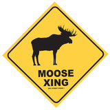 Moose Xing Tin Sign