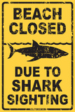 Beach Closed Due to Shark Sighting Tin Sign