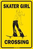 Skater Girl Crossing - Metal Tabela