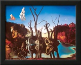 Swans Reflecting Elephants Art by Salvador Dalí