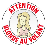 Warning Blonde at the Wheel Wall Decal