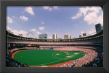 Busch Memorial Stadium St Louis Cardinals Archival Sports Photo Poster Print Art