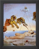 Dream Caused by the Flight of a Bee a Second Before Awakening Posters by Salvador Dalí