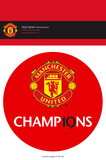 Manchester United - 19 Titles Vinyl Stickers Stickers