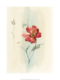 Antique Flowers IIi Prints by Paul Hargittai