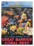 Great Barrier Coral Reef c.1933 Kunstdrucke von Frederick Phillips