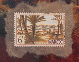 Maroc Stamp Posters by Ann Walker
