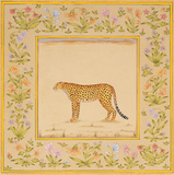 Miniature Series: Leopard Prints by Neelan Khanna