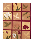 Windowpane Floral I Prints by Muriel Verger