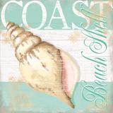 Coast Prints by Kathy Middlebrook